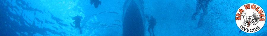 Sea Wolves Scuba Diving Club